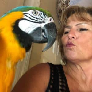 Palm Beach Parrot & Bird Rescue